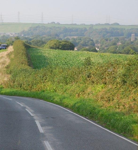 Farmland by the B4584