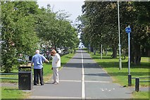 NZ3666 : Shared use path, South Shields by Richard Webb