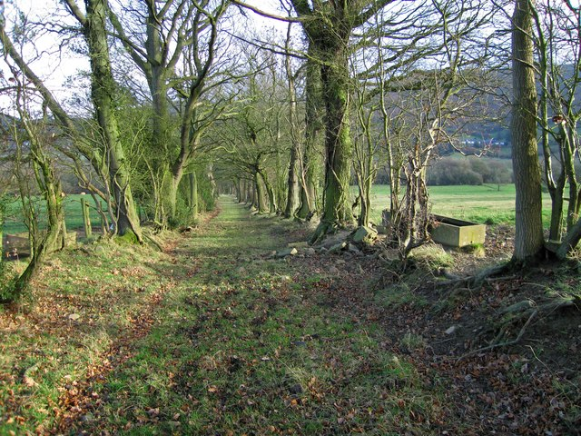 Track near Hogstow Hall