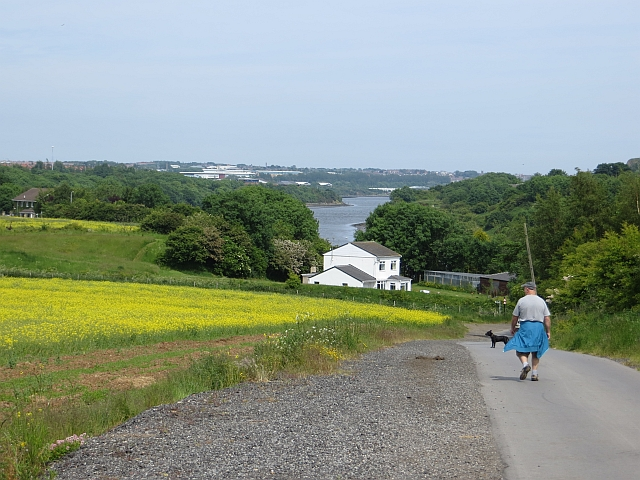 View downstream: River Wear