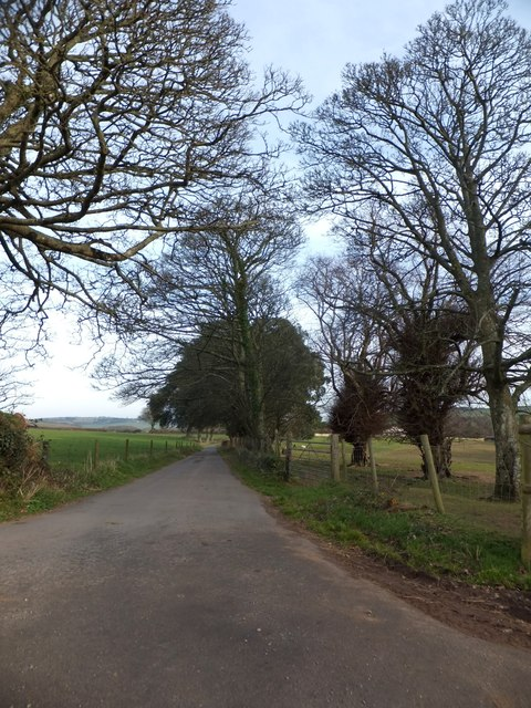 Access road for farm buildings at Nethway House