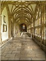 ST5545 : Wells Cathedral, Cloister by David Dixon