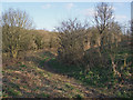 SS8677 : Footpath to Candleston Castle, Merthyr Mawr Warren by eswales