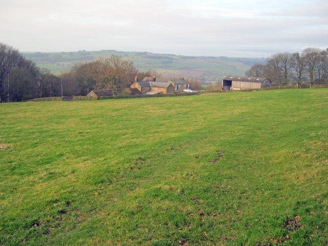 Meadow above Ballcross Farm