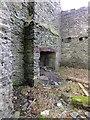 SC3588 : Fireplace in derelict farmhouse by Richard Hoare