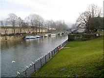 ST7564 : Bath, Parade Gardens and River Avon by David Dixon