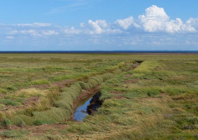 Tidal creek on the salt marsh at Friskney Flats