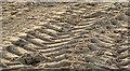 J4080 : Tyre tracks, Cultra by Albert Bridge