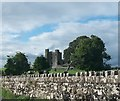 N8559 : Bective Abbey - a ruined fortified abbey on the Boyne by Eric Jones