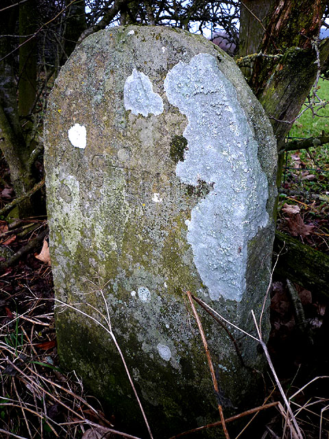 Boundary stone and possible bench mark near Beckstones