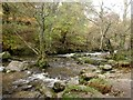 NY3920 : Aira Beck flowing towards Aira Force by Graham Robson