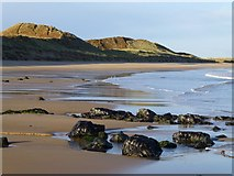 NU2422 : Sand, dunes, sea birds and rocks by Russel Wills