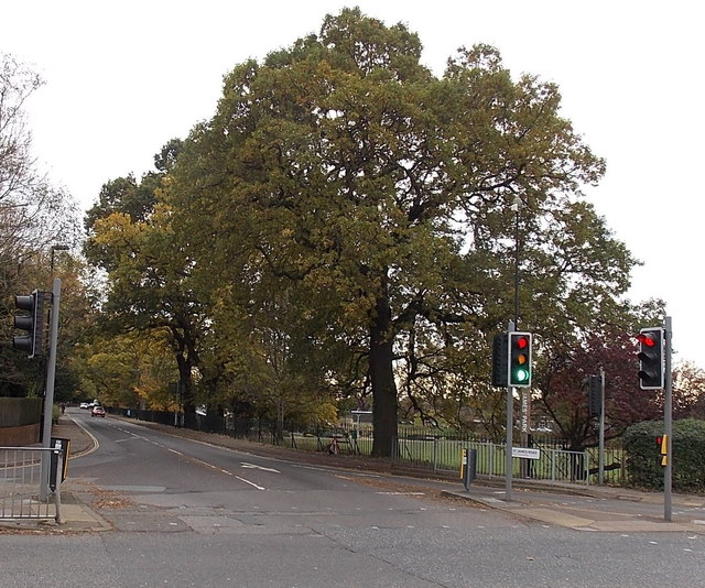 Tree-lined St James Road, Southampton