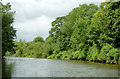 SO8269 : River Severn north of Lincomb Lock, Worcestershire by Roger  Kidd
