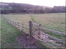 NZ0559 : Footpath between Hindley and New Ridley by Clive Nicholson