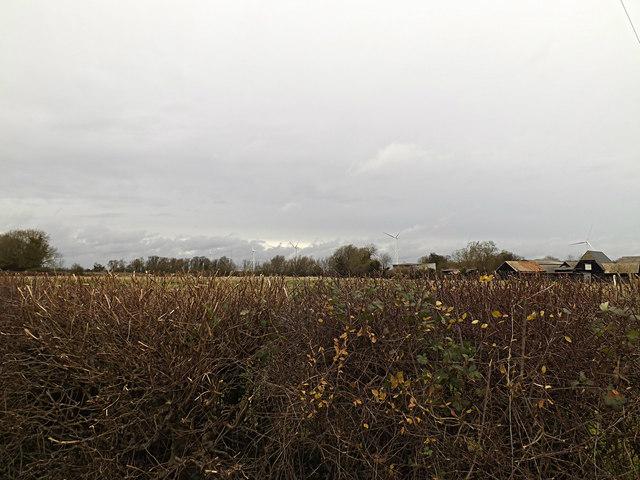 Wind Turbines near Green Farm