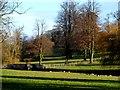 TL1926 : Parkland and ornamental bridge near St Ippollyts by Bikeboy