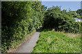 SN5981 : Footpath to Cefn Llan by Ian Capper