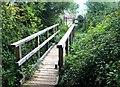 SY4192 : Footpath Bridge by Chris McAuley