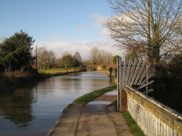 Grand Union Canal between bridges 44 and 45