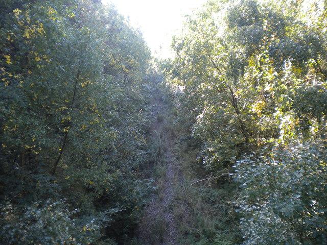 Railway trackbed in Sansom Wood