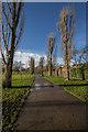 TQ3095 : Oakwood Park, Poplar Tree Avenue, London N14 by Christine Matthews