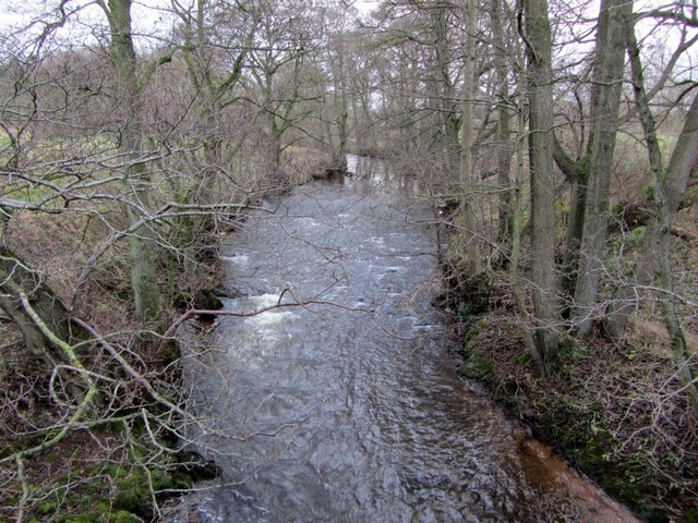 Crowdundle Beck