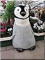 SJ4053 : A Christmas Penguin in Bellis Brothers Farm Shop, Holt by Jeff Buck