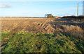 TF0063 : Fields towards Highfield Farm by Julian P Guffogg
