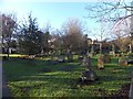 SX8767 : Churchyard of St Mary's church, Kingskerswell by David Smith