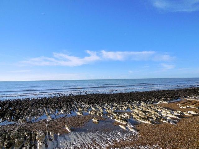 Rocky Beach at Saltdean by Paul Gillett