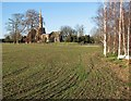 TL3266 : Conington church and winter trees by John Sutton