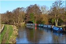 SU9946 : River Wey Navigation from Broadford Bridge by David Martin