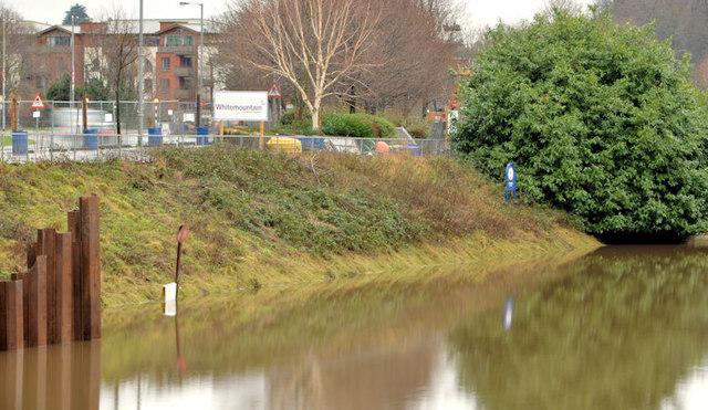 Riverbank, Annadale, Belfast