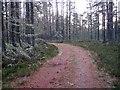 NH6860 : A bend! by Richard Dorrell