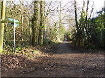 SO7020 : Footpath junction on May Hill, Glos by Jeremy Bolwell