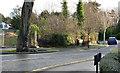 J3874 : No 275 Belmont Road, Belfast - December 2013 (2) by Albert Bridge
