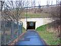 NZ1766 : Subway below A69, Blucher by Andrew Curtis