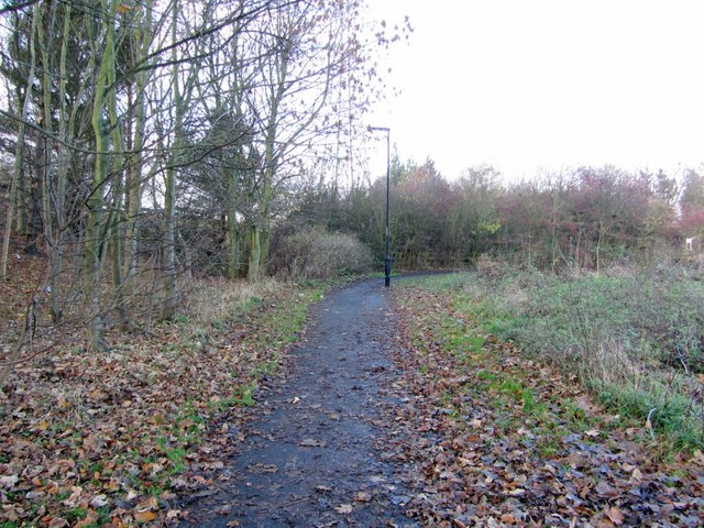 Path along north side of A69