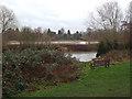 SP2965 : River Avon by Pickard Street, Warwick 2013, December 30, 12:16 by Robin Stott