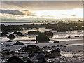 NH7458 : Coastline north of Rosemarkie by Julian Paren