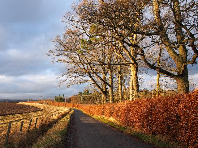Minor road, west of Balcraig