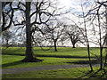 SE5318 : View into Womersley Park park by Alan Murray-Rust