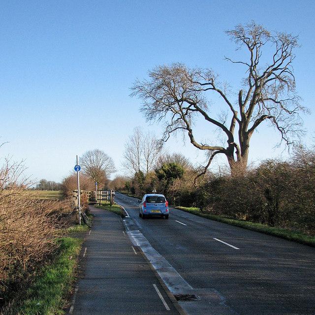 Crossing Beck Brook