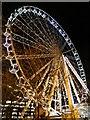 SJ8498 : Ferris Wheel, Piccadilly Gardens by David Dixon