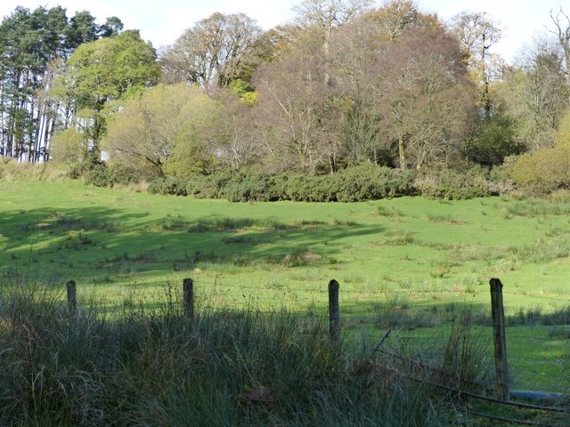 Field behind Creggans