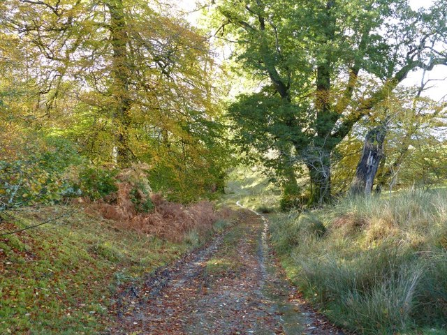 Track to Creggans