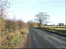 SE3660 : Boroughbridge Road (A6055) by JThomas
