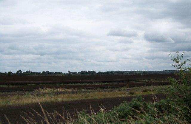 Bog land north of the River Blackwater