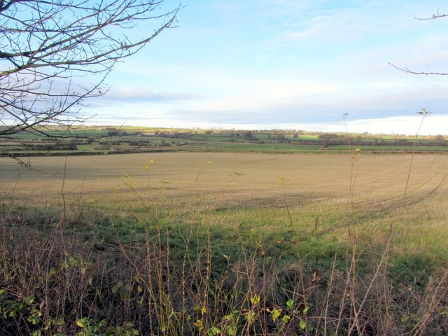 Arable land north of North Walbottle